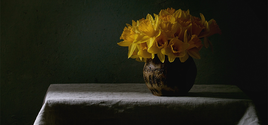 Still Life Photography A Comprehensive Guide Adobe