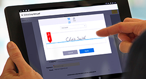 Typical e-signatures